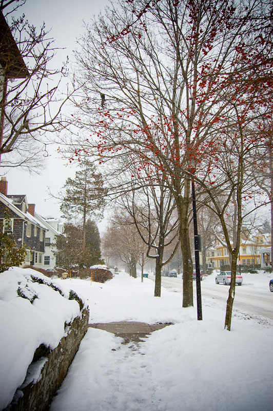 Who's responsible for clearing sidewalks of snow? All of us! [PHOTO: Nearsoft Inc, Flickr]